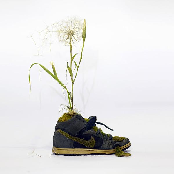 Just Grow It Christophe Guinet  Mr. PLANT 6