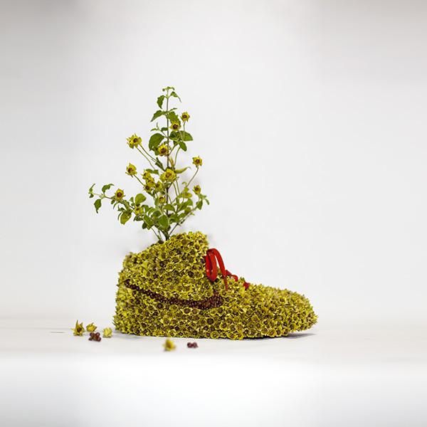 Just Grow It Christophe Guinet  Mr. PLANT 7