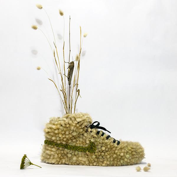 Just Grow It Christophe Guinet  Mr. PLANT