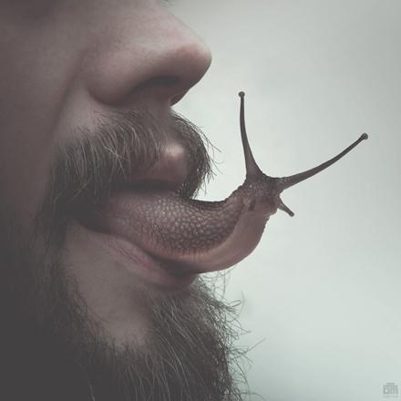 lick you Oliver Marinkoski