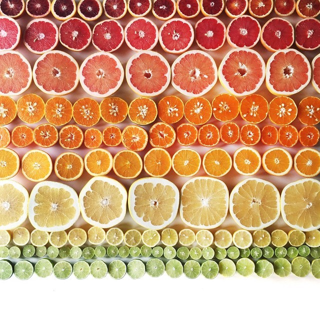 food gradients Brittany Wright